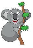 Cute cartoon koala on a tree — Stock Vector