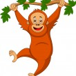 Cute orangutan cartoon hanging on a tree branch — Stock Vector