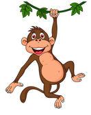 Cute monkey cartoon hanging — Stock Vector
