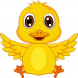 Stock Vector: Cute baby duck cartoon