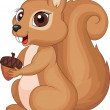 Cute cartoon Squirrel holding acorn — Stock Vector