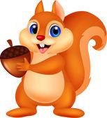 Squirrel cartoon with nut — Stock Vector