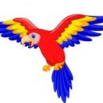 Cute toucan bird cartoon flying — Stock Vector