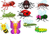 Insect cartoon collection set — Stock Vector