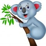 Cute koala cartoon — Stock Vector #27978771