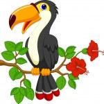 Toucan bird — Stock Vector