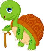 Elderly tortoise — Stock Vector