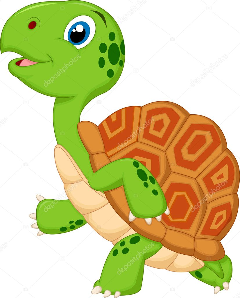 clipart tortue gratuit - photo #34