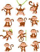 Monkey cartoon set — Stock Vector