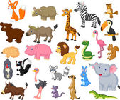 Animal collection — Stock Vector
