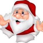 Santa Clause cartoon — Stock Vector #49602137