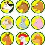 Farm animal collection — Stock Vector #49607741