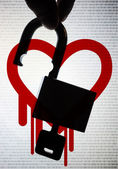 Heartbleed, an OpenSSL critical bug — Stock Photo