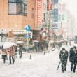 Snow storm in Yokohama, Japan — Stock Photo #42301225