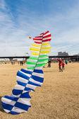 Man flies Kite — Stock Photo