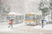 People walks in snow storm — Stock Photo
