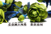 Coming soon with green flowers — Stock Photo