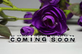 Magenta flower and coming soon message — Stock Photo