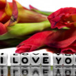 I love you with red flowers — Stock Photo