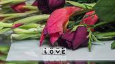 愛 — ストック写真