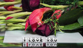 I love you with flowers — Stock Photo