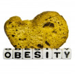Obesity — Stock Photo #33700589