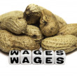 Peanuts and wages — Stock Photo