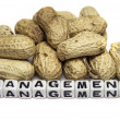 Poor management — Stock Photo