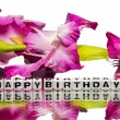 Happy birthday with pink flowers — Stock Photo