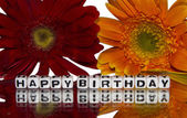 Happy birthday with red and yellow flowers — Stock Photo