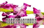 Happy birthday with pink flowers — Stock Photo