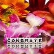 Stock Photo: Congrats with flowers