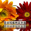 Stock Photo: Congrats with red and yellow flowers
