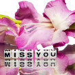 Miss you — Stock Photo #37690553