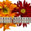 Stock Photo: Seasons greetings with yellow and red flowers
