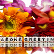 Stock Photo: Seasons greetings with mixed flowers