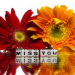 Miss you with flowers — Stock Photo #37693773