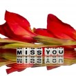 Miss you message — Stock Photo #37693881