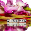 Miss you message with green and pink stem — Stock Photo
