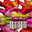Miss you with red and pink colored flowers — Stock Photo #37694111