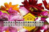 Housewarming with flowers — Stock Photo