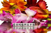 Congrats with flowers — Stock Photo