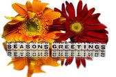 Saudações de temporadas com flores amarelas e vermelhas — Fotografia Stock