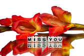 Miss you with dark red flowers — Stok fotoğraf