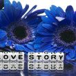 Love story with blue theme — Stock Photo #41356399