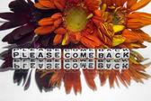 Vibrant please come back message — Foto de Stock