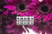 Trust message with pink flowers — 图库照片