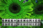 Sweet memories message with green flowers — Stock Photo