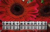 Sweet memories text message — Stock Photo