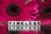 Timeless text message with flowers — Stock Photo